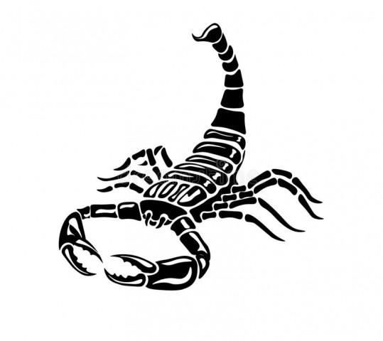 La ScorpionJuve